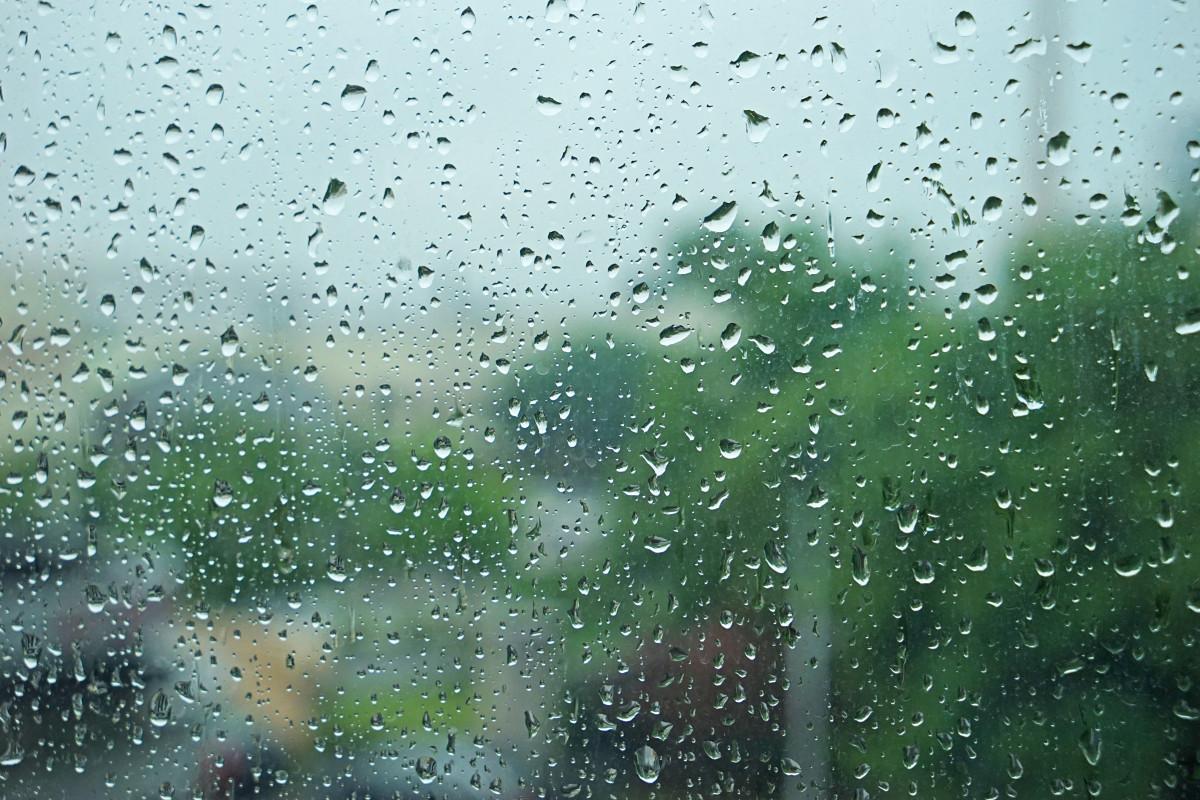 Картинки 6 августа день дождя