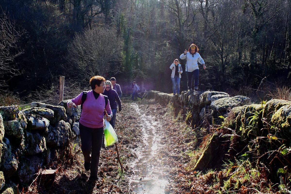 skog vildmark gående vandring spår äventyr rekreation strömma ås sporter backpacking skog ggl1 barbeira friluftsliv
