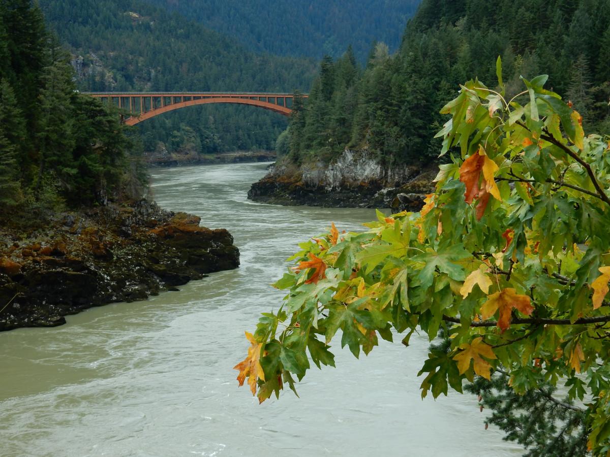 Gambar : pemandangan, pohon, air, alam, daun, bunga, danau ...
