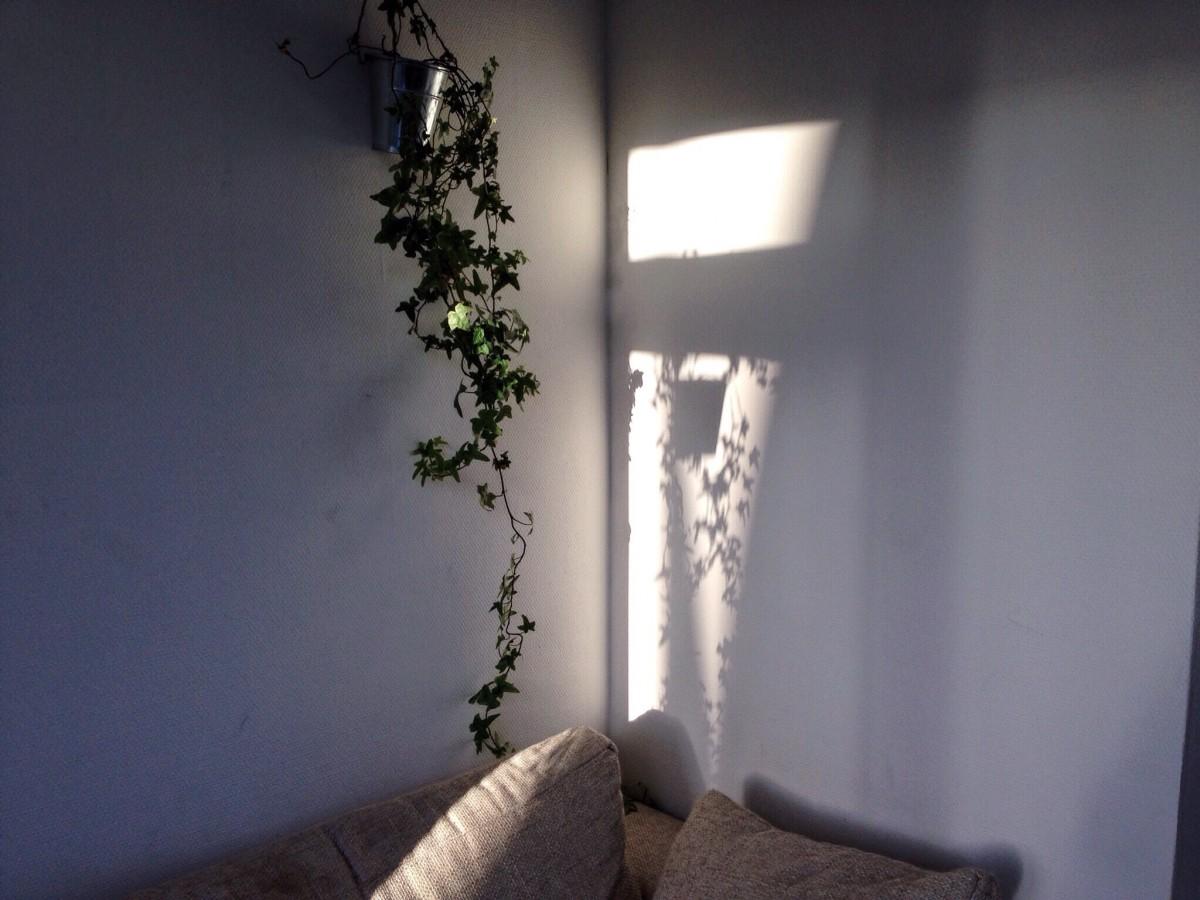 images gratuites lumi re maison mur chambre clairage appartement design d 39 int rieur. Black Bedroom Furniture Sets. Home Design Ideas