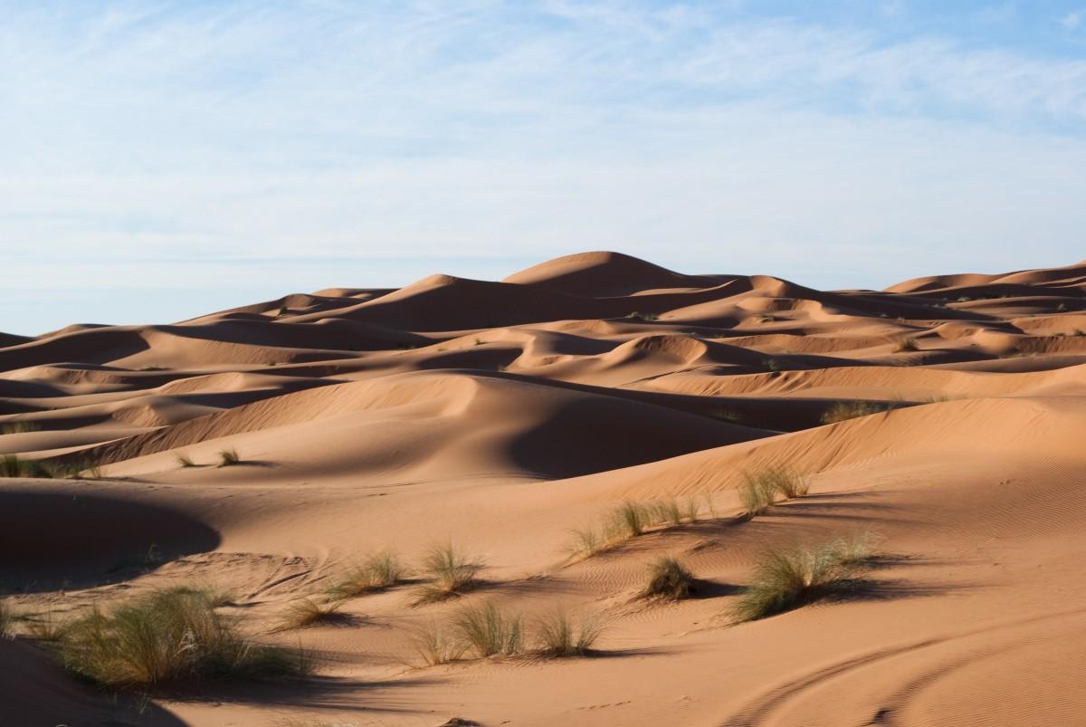 песчаные пустыни картинки отбывания