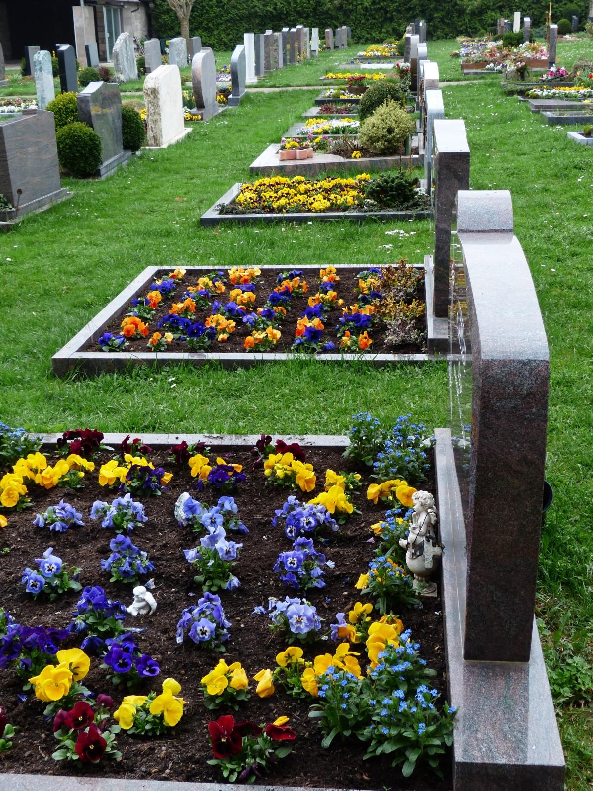 Можно ли на кладбище сажать цветы из своего сада 8