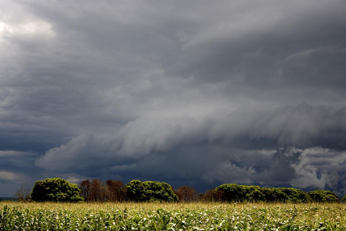 отличие дождевое небо картинки весной компания
