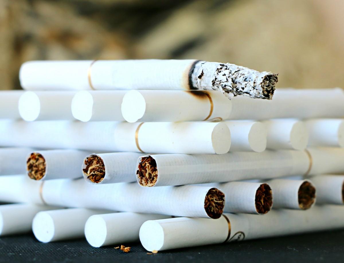화이트 흡연 무늬 금연 건강 증진 협회 담배 닫다 디자인 손해 담배 걱정 습관 의존성