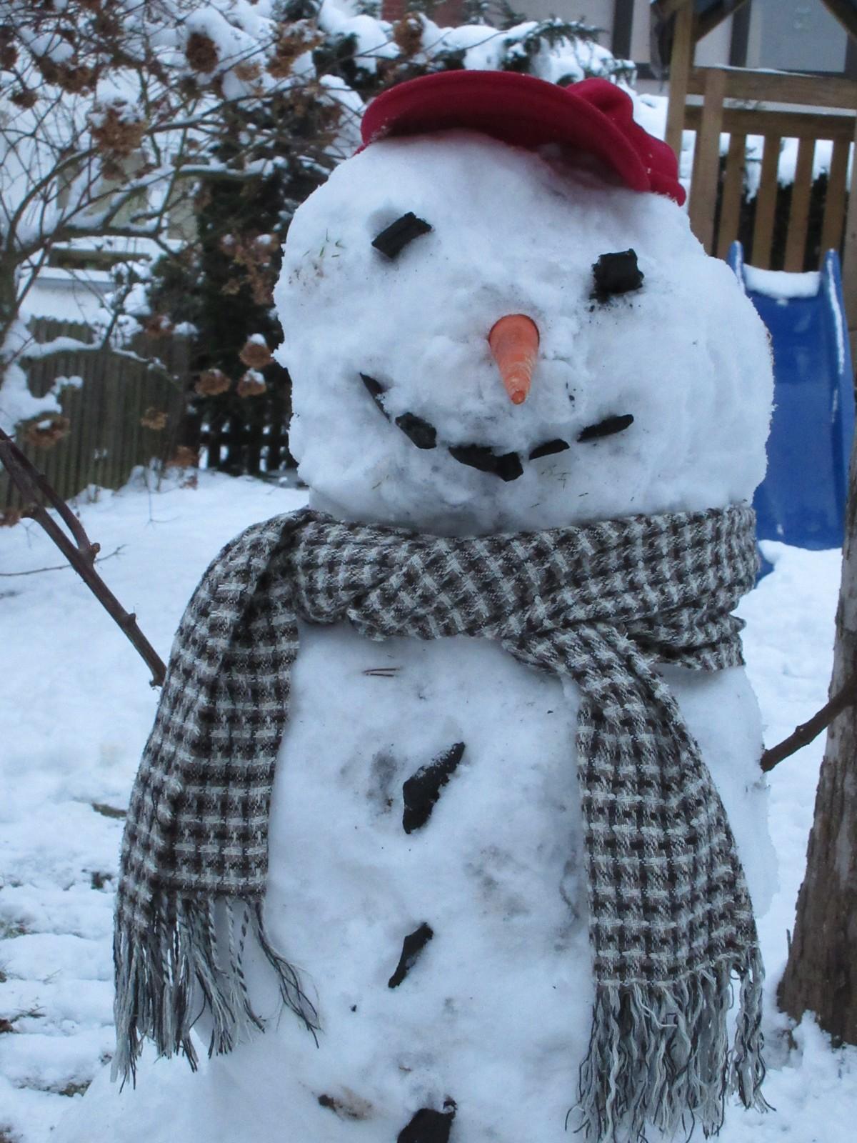 Kostenlose Foto Schnee Kalt Winter Weiss Wetter Jahreszeit