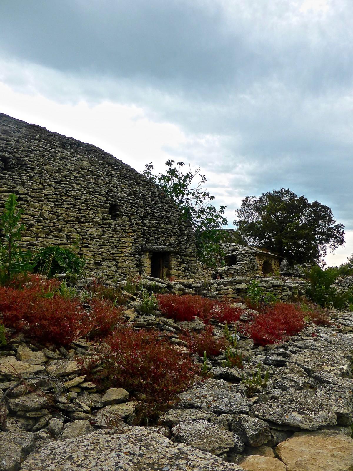 Fiori Da Giardino In Montagna immagini belle : paesaggio, albero, roccia, montagna