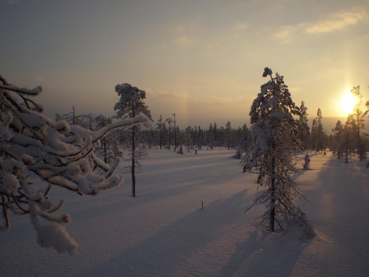 Images gratuites arbre for t montagne neige hiver lever du soleil le coucher du soleil - Meteo lever et coucher du soleil ...