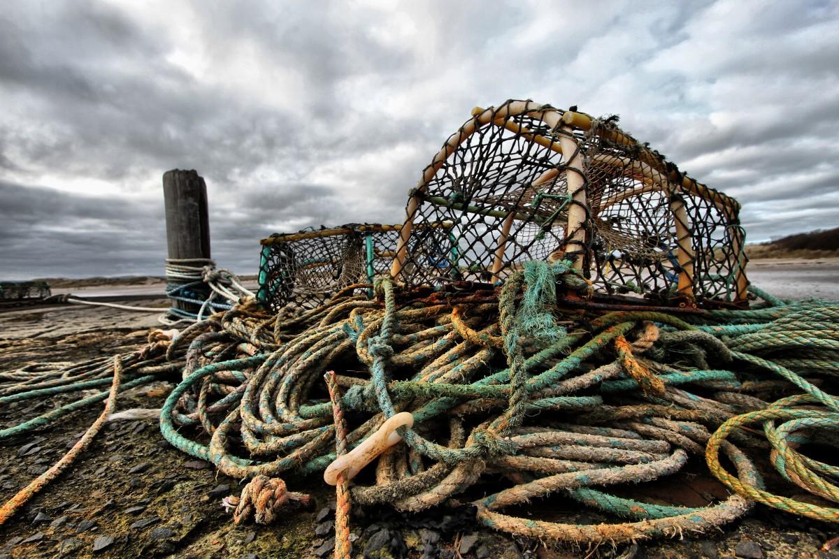 Free Images : rope, boat, city, coastal, pot, seaside, food, vendor, fishing, color, seafood ...