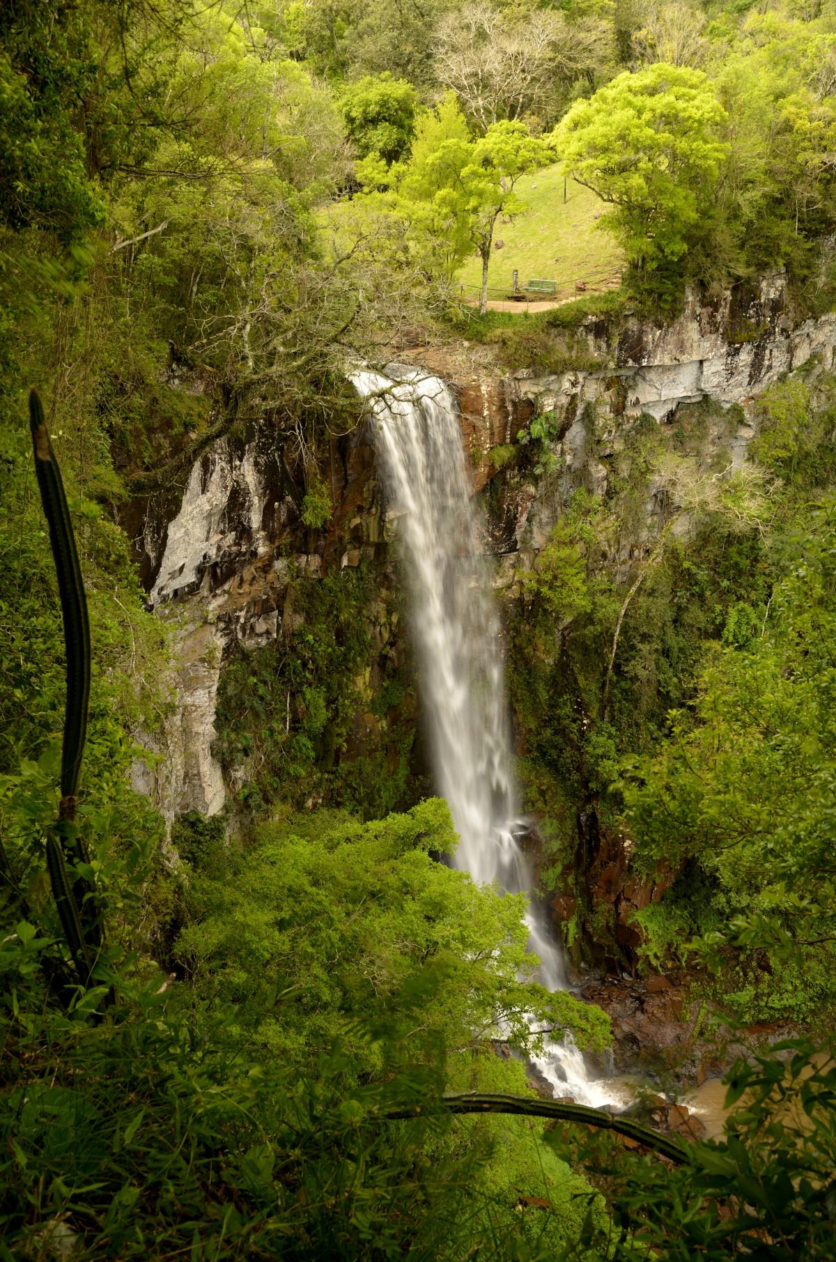 Bakgrundsbilder tr d vatten natur skog vattenfall for Cascada par