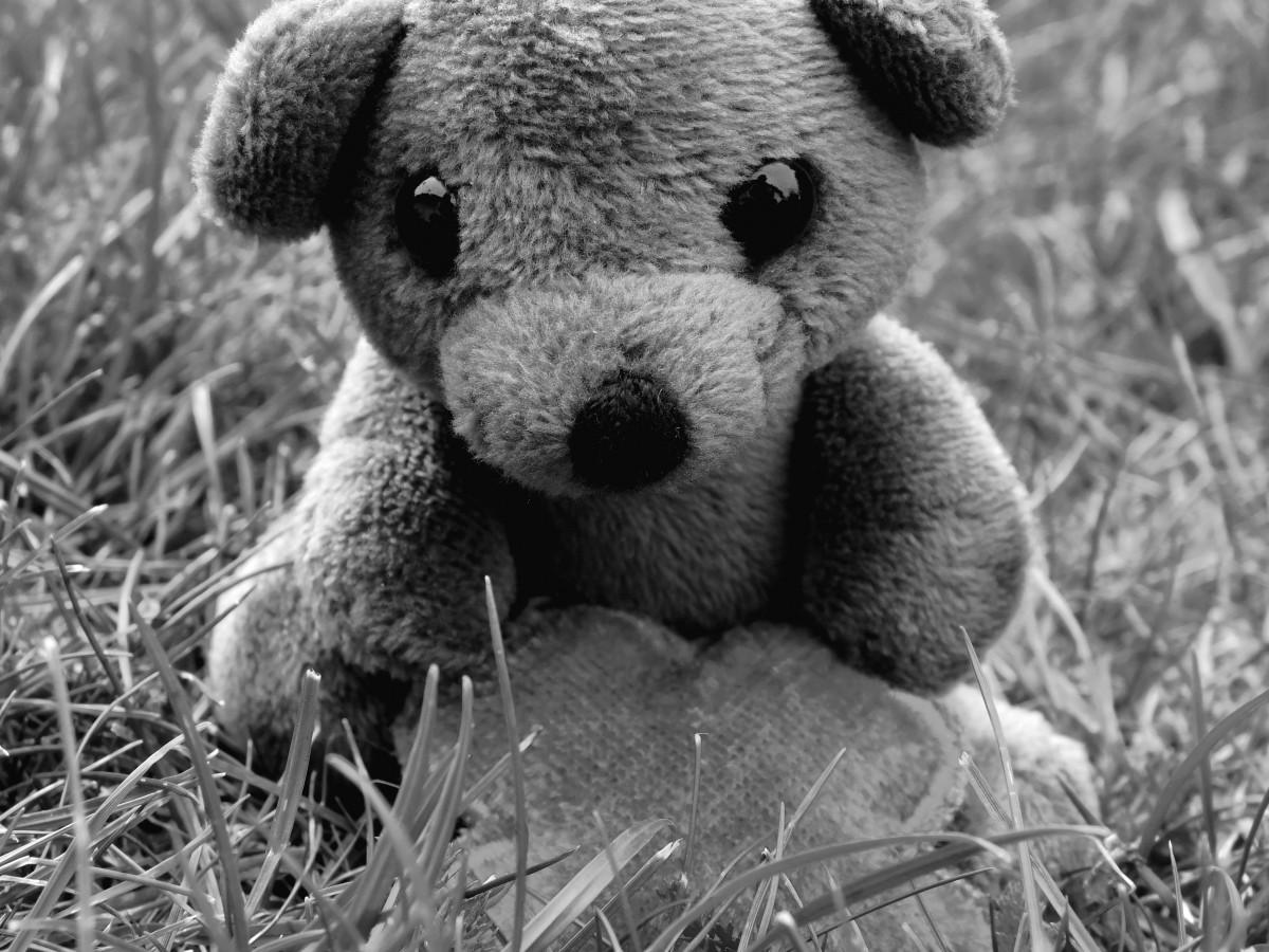 Черно белые картинки медвежонок