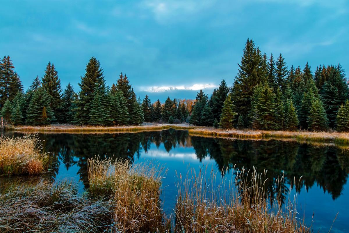 Free Images : landscape, lake, pond, reflection, lagoon ...