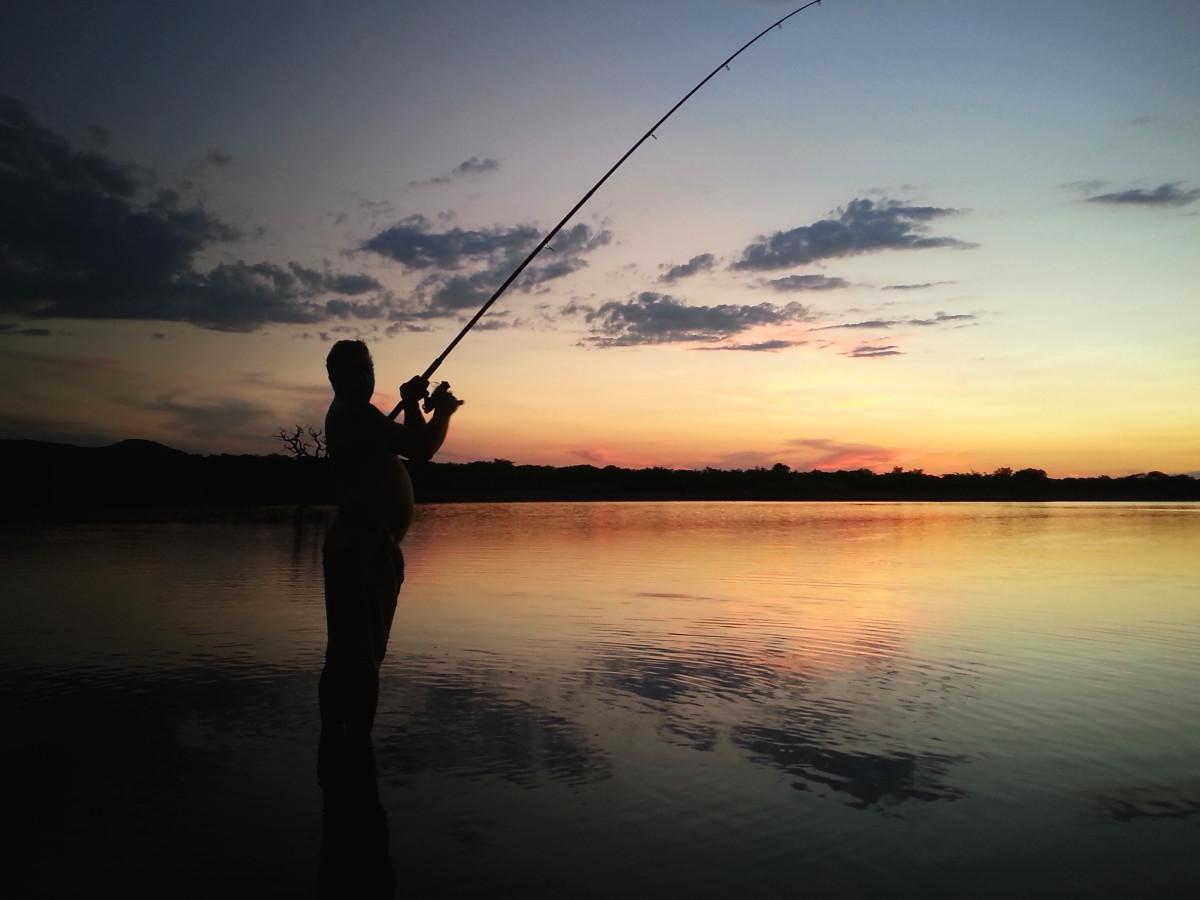 больше картинка ловят рыбу привязанность детям