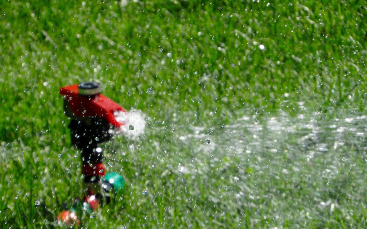 landscape, water, nature, grass, outdoor, bird, plant, lawn, meadow, leaf, flower, wet, green, splash, equipment, spray, garden, turf, gardening, sprinkler, watering, perching bird, Free Images In PxHere
