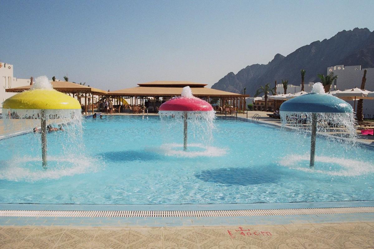 Swimming Pool Travel : Free images beach sea sand bird sky glass summer