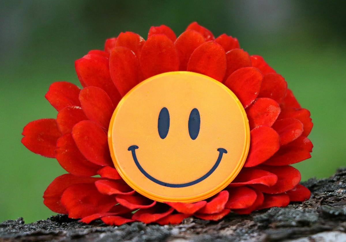 Смайлики смешные картинки с цветами, той открытке