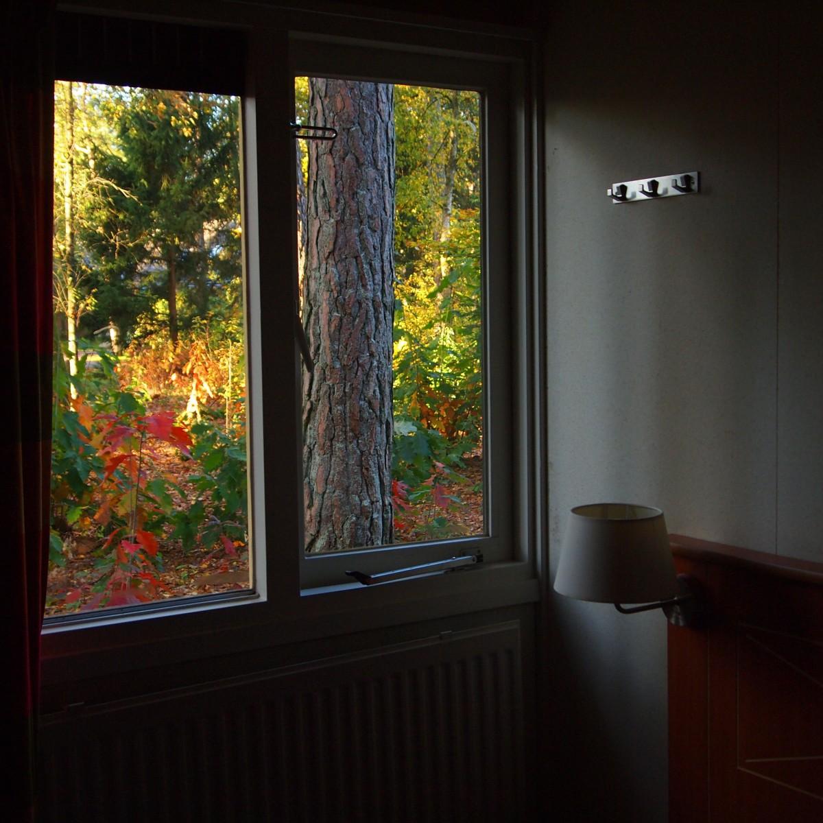 room_window_vista_autumn_garden_colors_f
