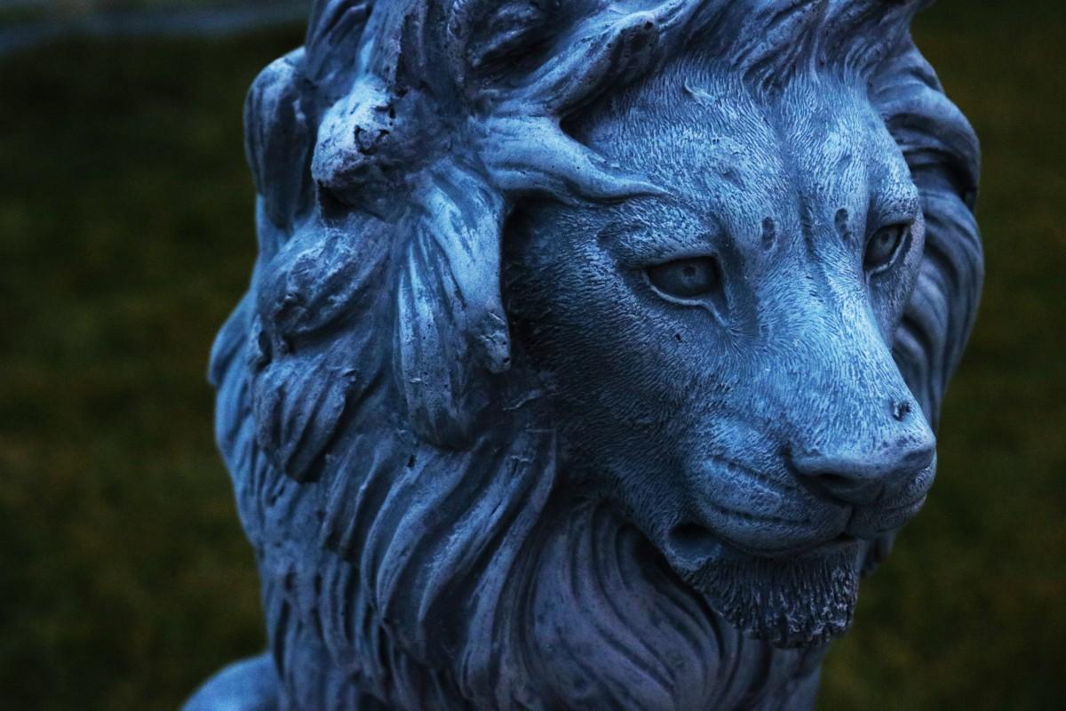 images gratuites monument statue bleu lion gargouille sculpture art t te gros chats. Black Bedroom Furniture Sets. Home Design Ideas