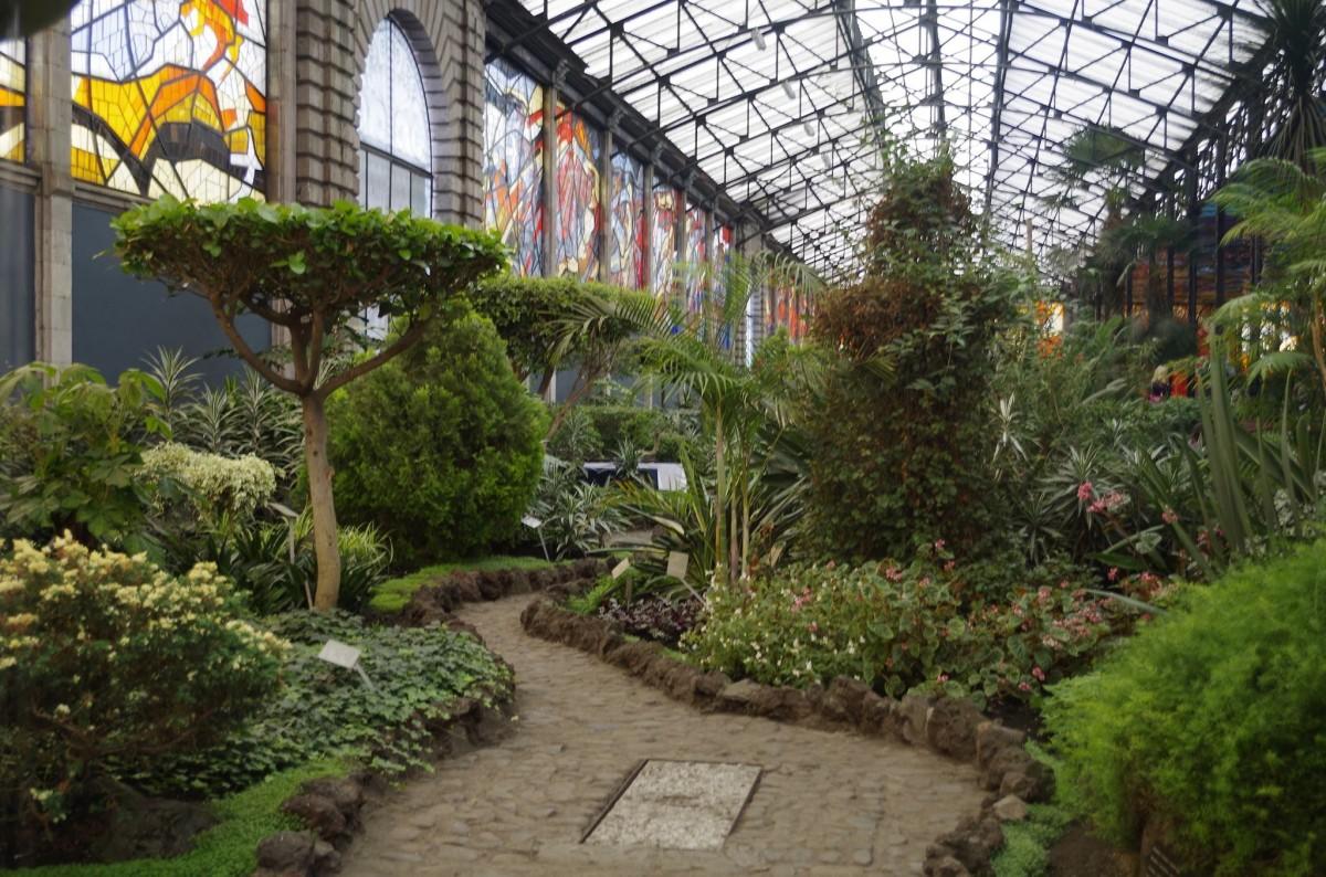 Fotos gratis c sped flor patio interior bot nica paisajismo arbusto casa de campo - Ley propiedad horizontal patio interior ...