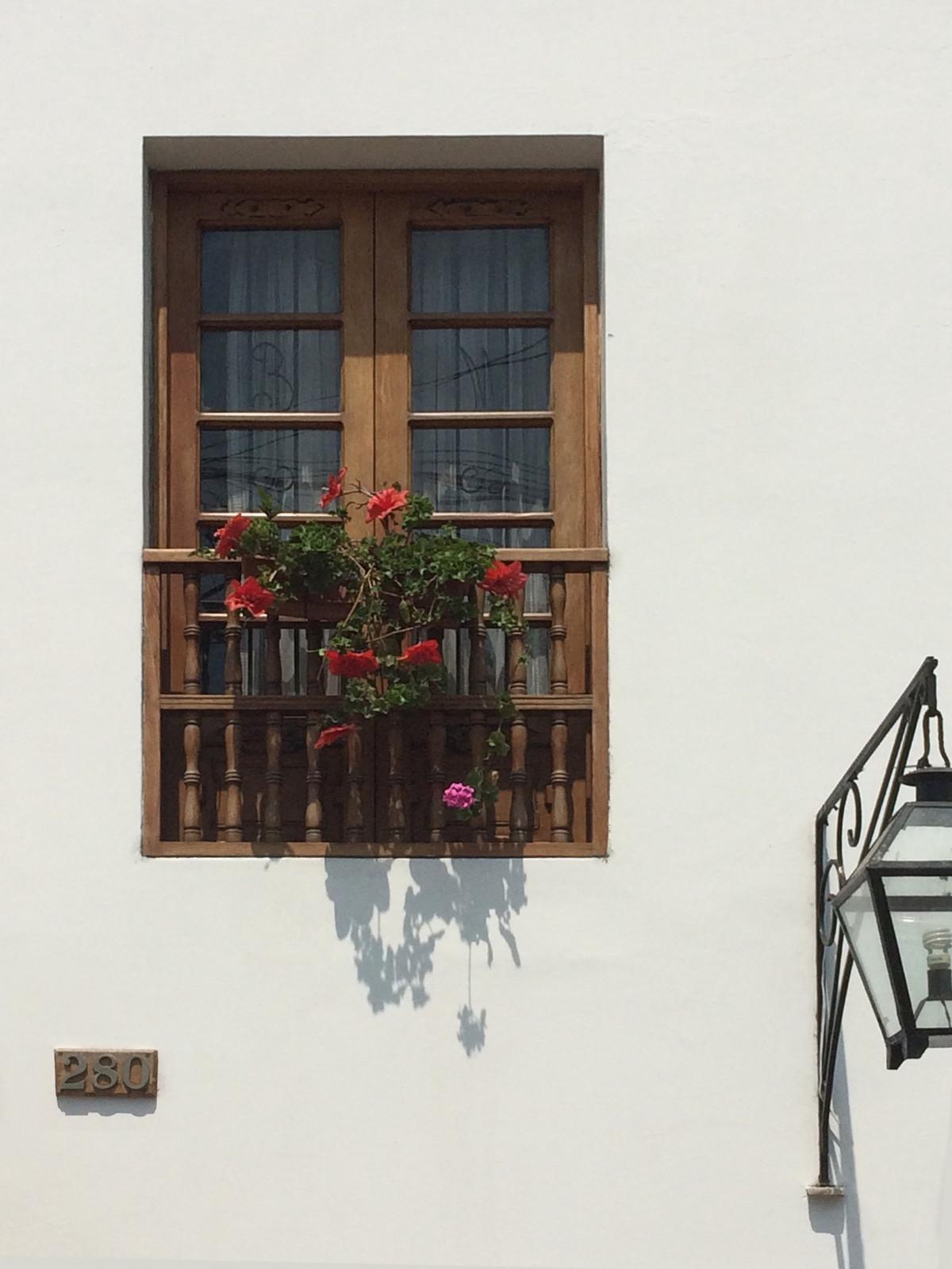 Images gratuites blanc maison sol fen tre mur for Decoration facade fenetre