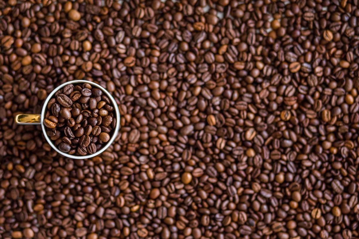 Cafe Kaffee Morgen Samen braten Aroma Tasse Cappuccino Lebensmittel produzieren Ernte natürlich frisch braun Boden Getränk Getränk schwarz Landwirtschaft Frühstück Espresso Koffein stark Bohnen brauen Mokka Geschmack geröstet Kaffeebohnen Grasfamilie
