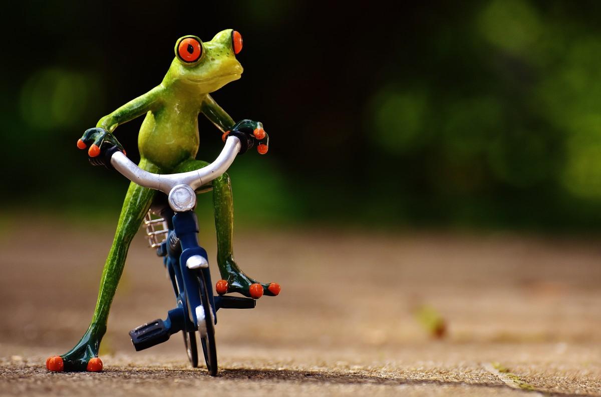 Надписью, смешные картинки с велосипедом