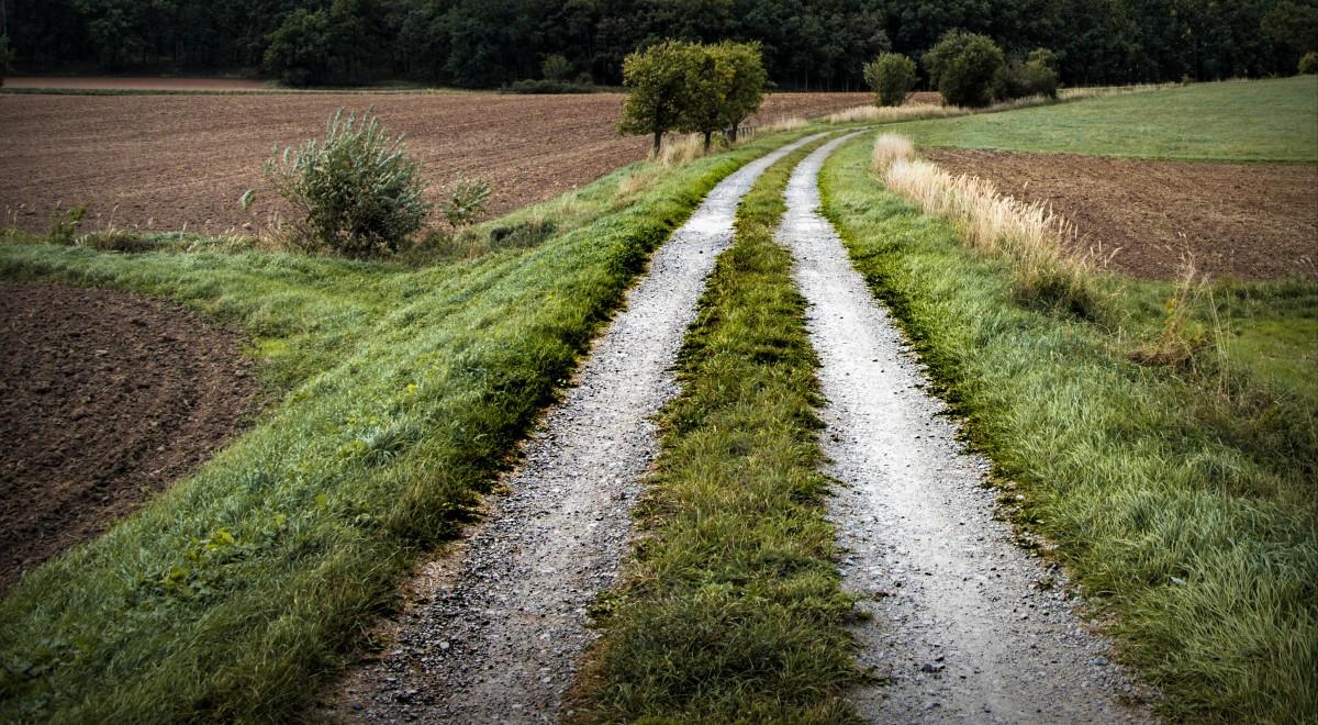 Banco de imagens panorama madeira pista campo - Servitu di passaggio ...