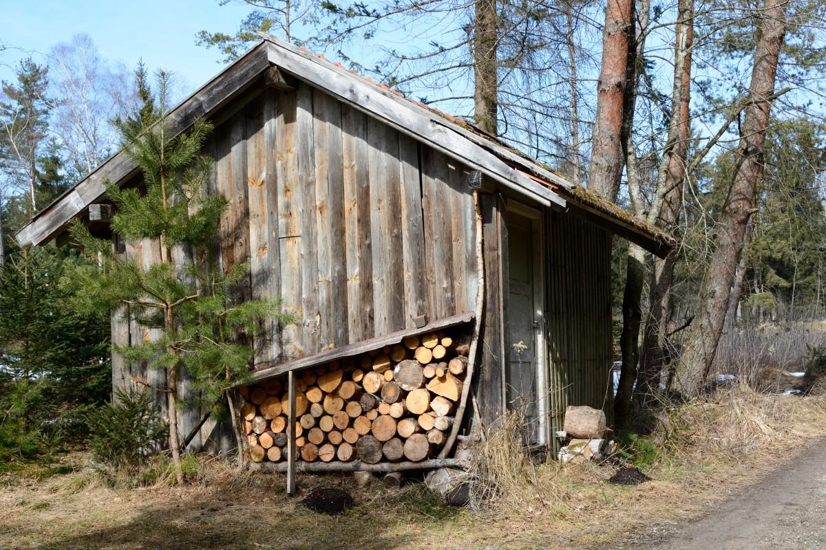 Images gratuites arbre la nature for t pont vieux for Log cabin montagne blu