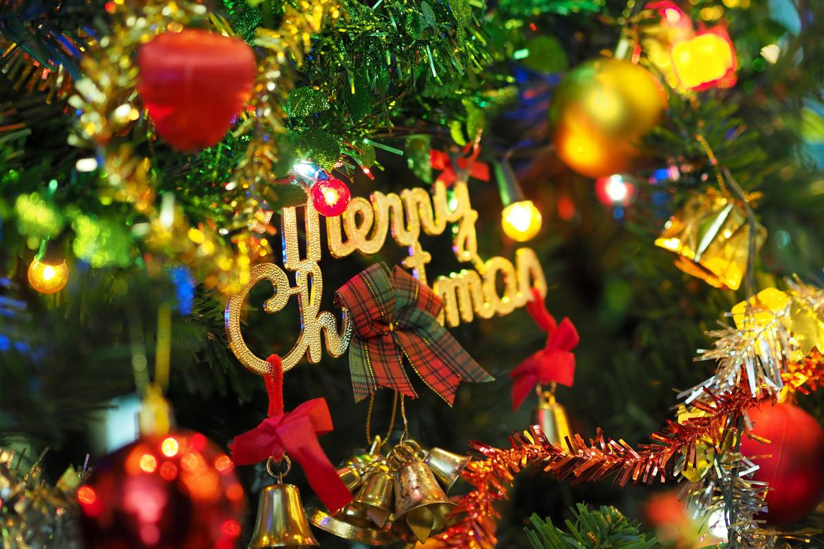 Культура: дерево филиал растение цветок праздник карнавал Осень день отдыха Рождество Флора Рождественская елка рождественские украшения Фестиваль счастье веселая счастливого Рождества Канун Нового года Новогодняя елка Украсить елку мигающие огни