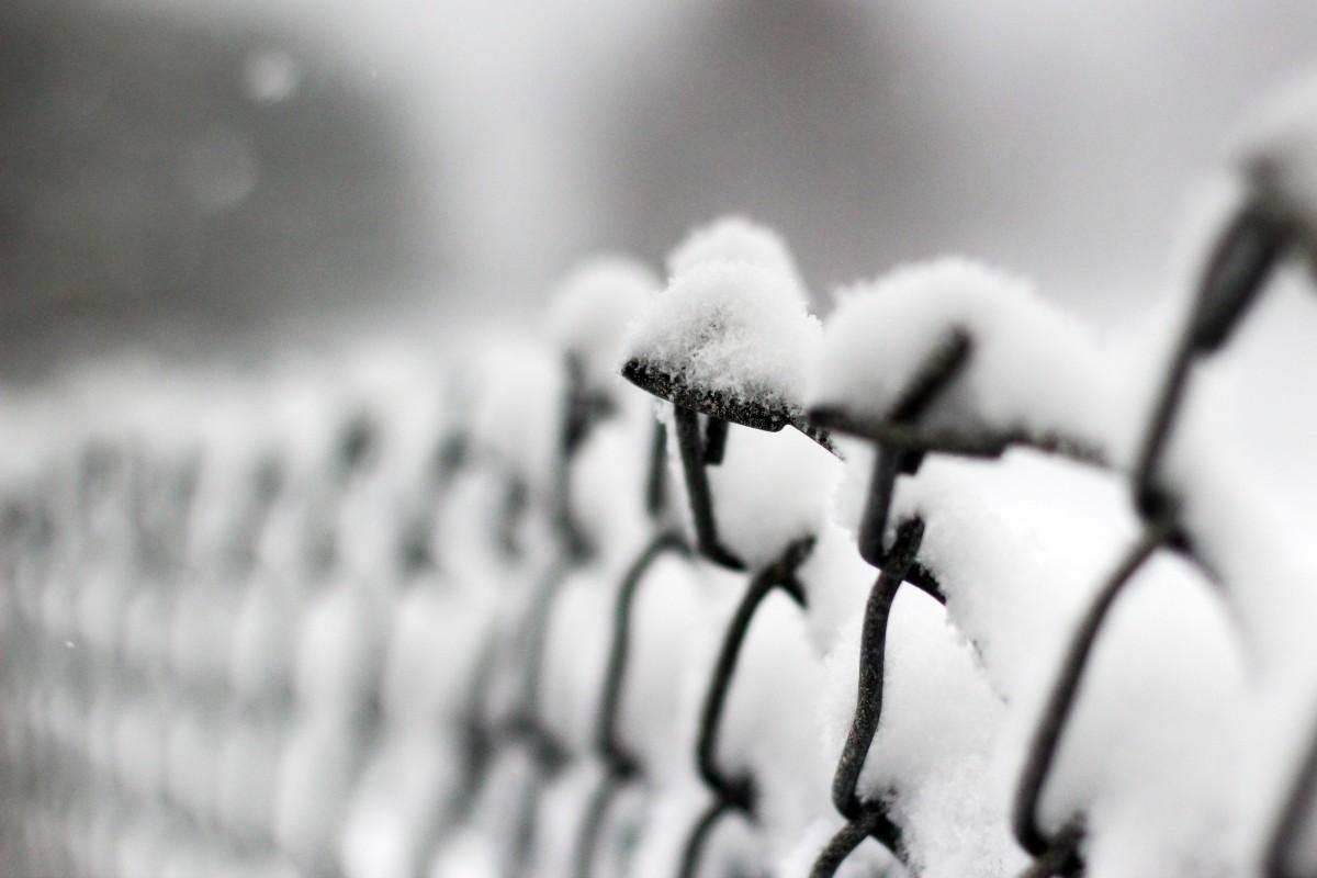 kostenlose foto schnee winter schwarz und wei wei fotografie regen blatt fenster eis. Black Bedroom Furniture Sets. Home Design Ideas