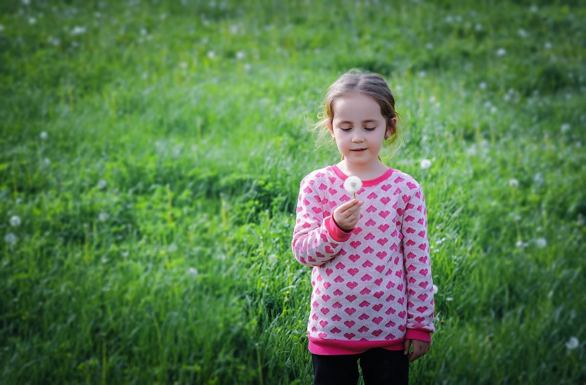 Fotos gratis : césped, persona, campo, prado, jugar ...