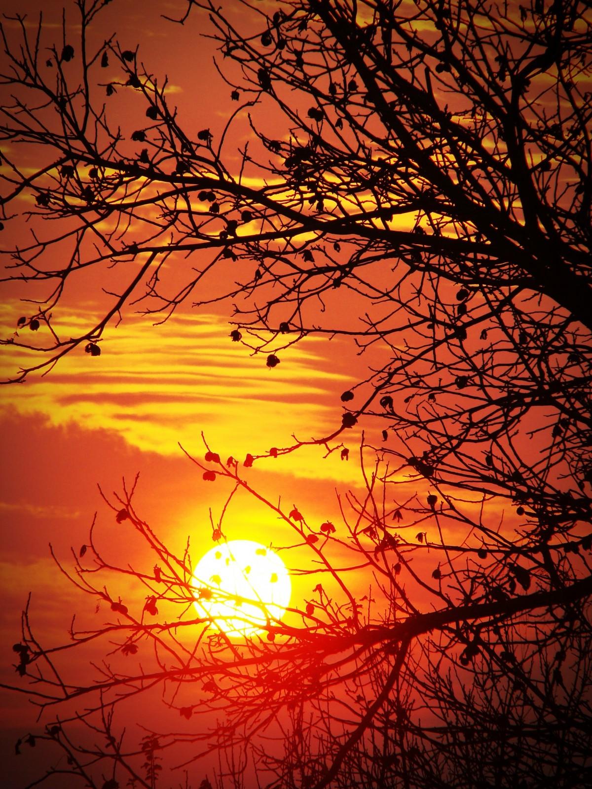Открытки восход солнца
