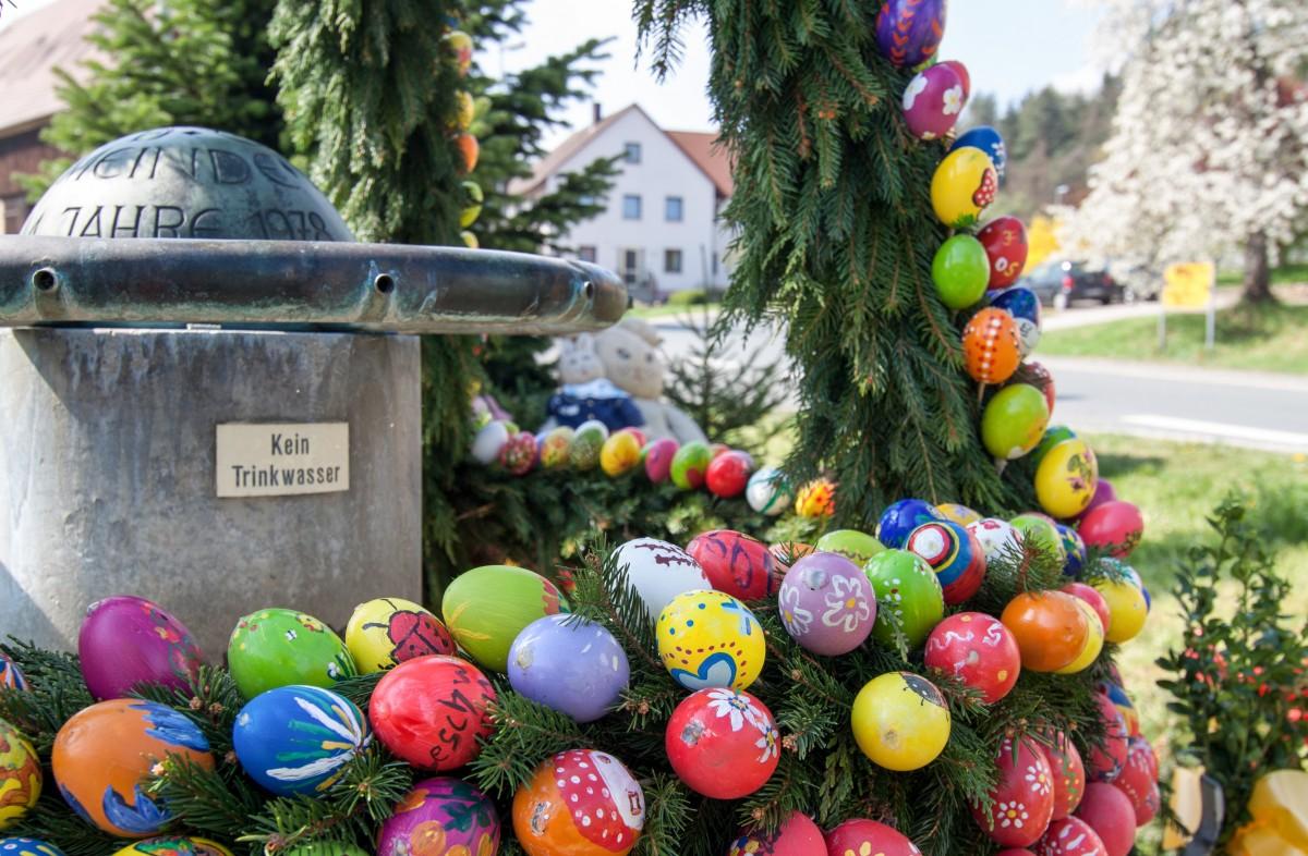 Banco de imagens flor, jardim,árvore de Natal, Decoraç u00e3o de Natal, festival, Florística, ovos  -> Decoração De Pascoa Jardim