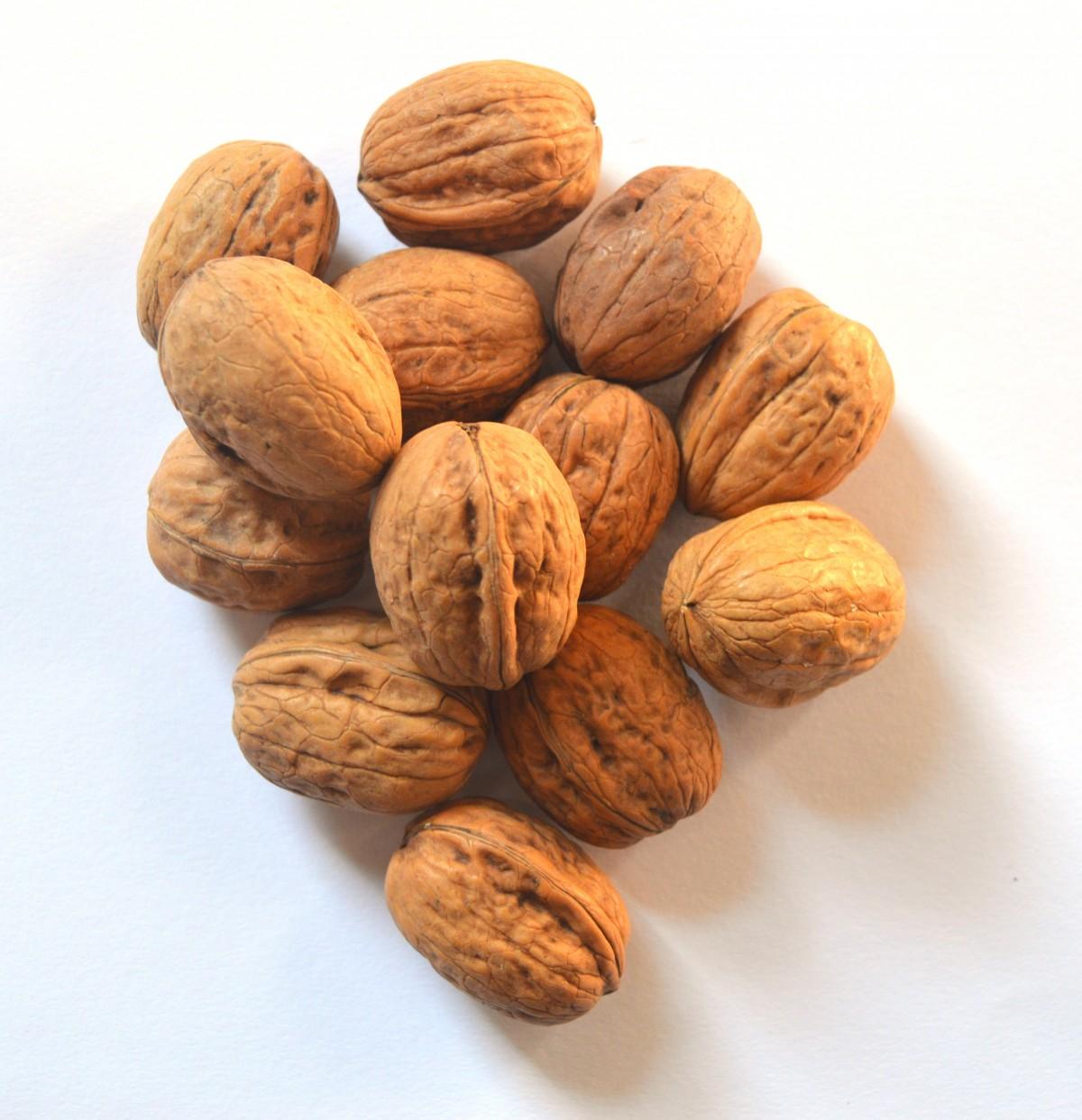 Выращивание грецкого ореха из семян ЧАСТНЫЙ ДОМ. САД 32