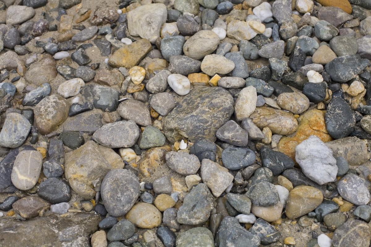 H nh nh b bi n vi n s i b c t ng v t ch t for Landscaping rocks virginia beach
