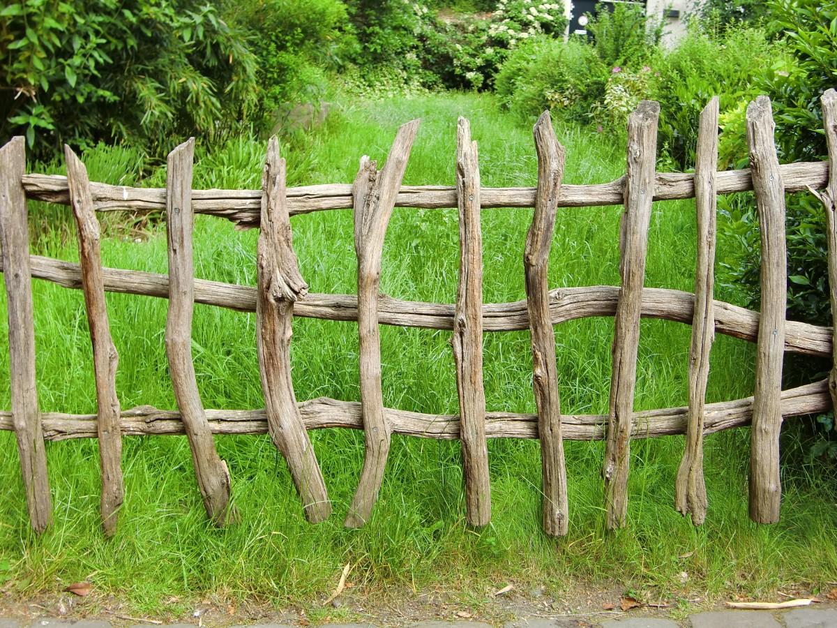 栅栏_图片素材:树,性质,篱笆,草地,壁,牧场,花园,尖桩篱栅,静物