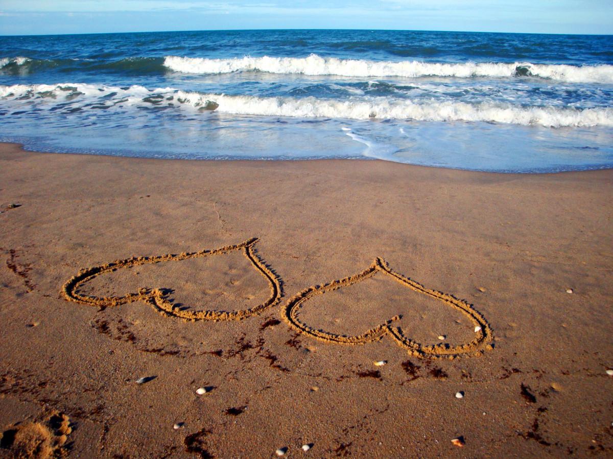 Дню энергетика, открытки море солнце и любовь