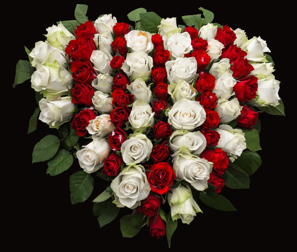 Доставка, самый красивый букет роз в мире картинки