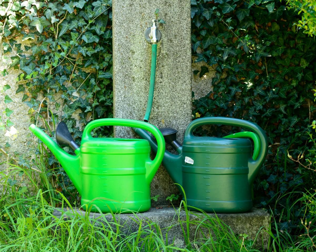 Kostenlose foto : Wasser, Gras, Rasen, Pot, Werkzeug, Grün ...
