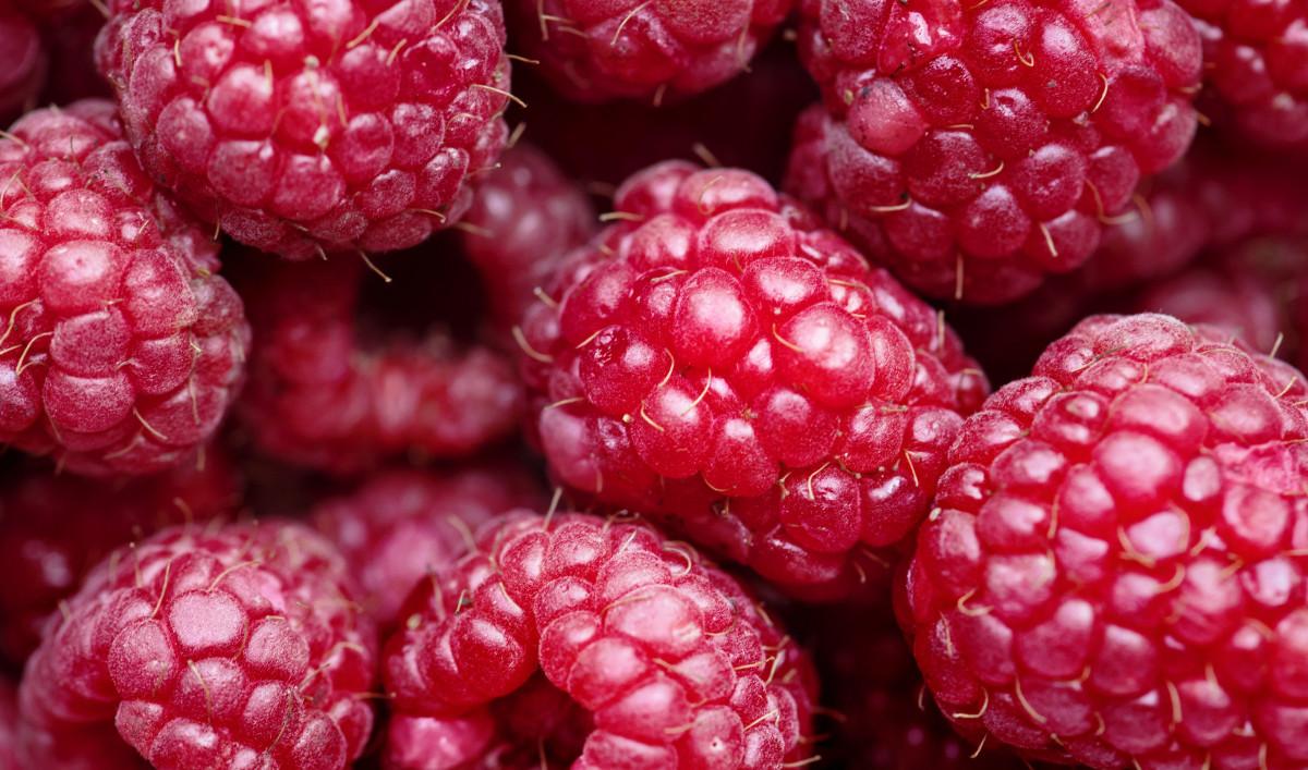 Aliments naturels framboise baie fruit Boysenberry Tayberry Loganberry cuisine locale la mûre Superbe Framboises mûres et rosettes aliments Frutti di bosco produire canneberge Mûrier rouge mûre Fruit sans pépins Framboise indienne de l'ouest