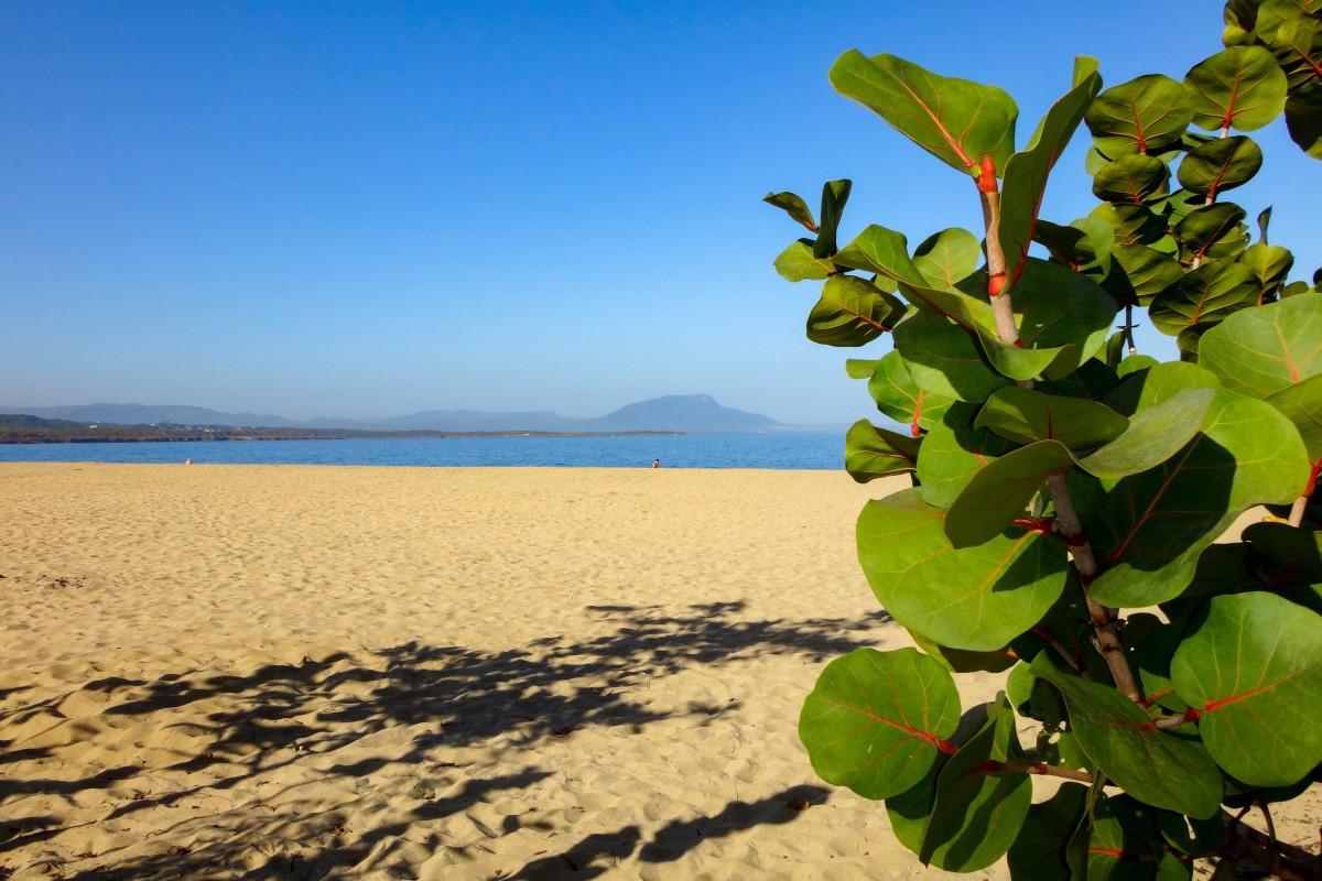 Kostenlose Foto Küste Wasser Natur Sand Ozean Horizont