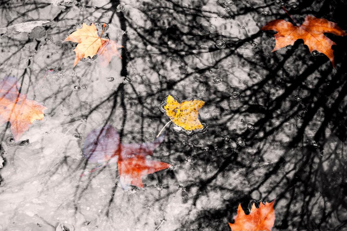 картинка погода на осень конечно