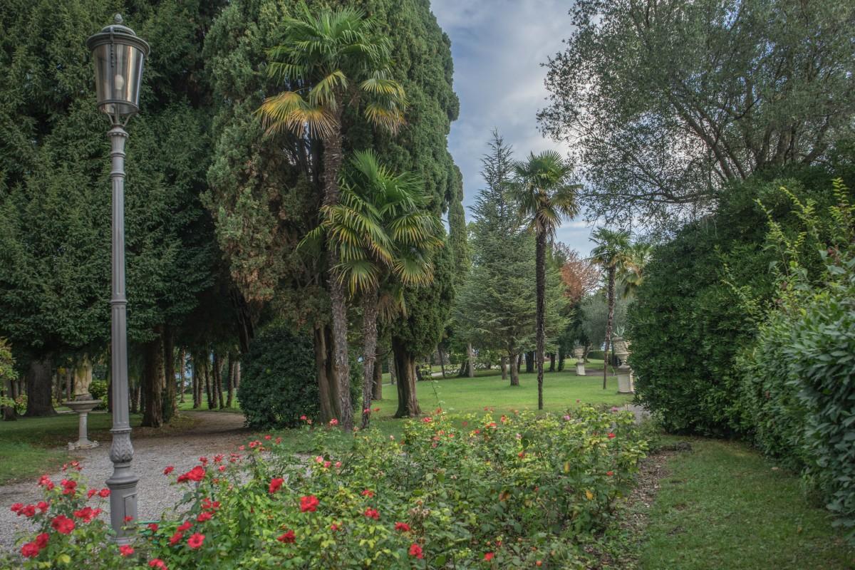 Fotos gratis c sped planta flor verano parque - Disenador de jardines ...