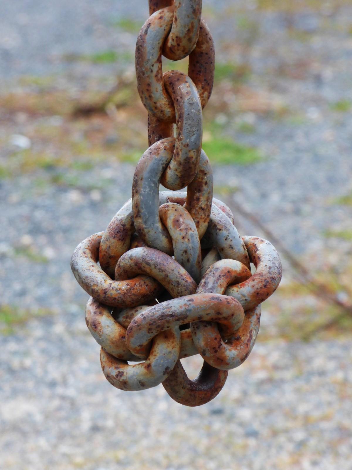 chaîne métal Matériel rouillé serpent des liens nœud serpent compliqué Enchevêtré
