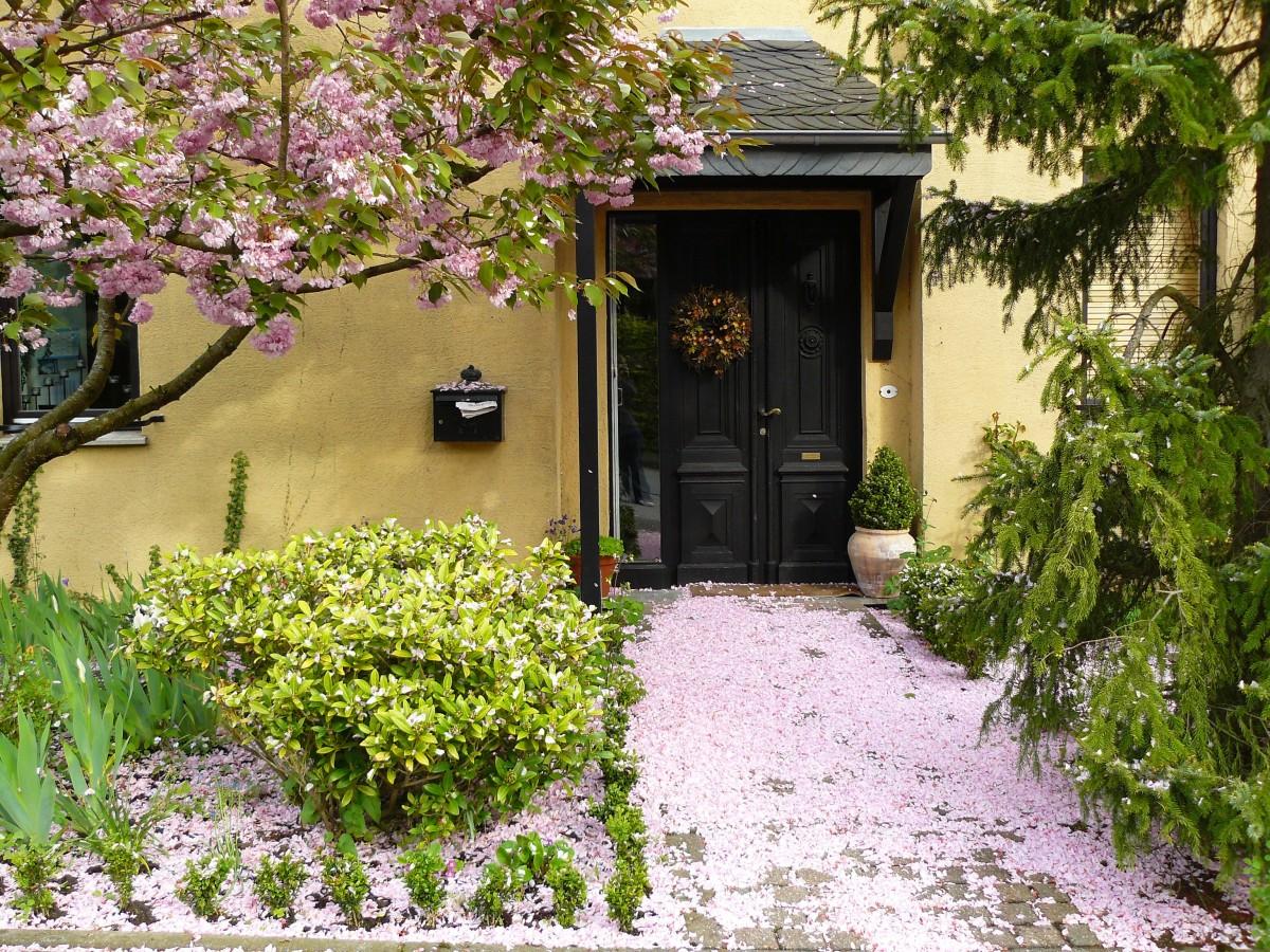 Fotos gratis mesa planta flor silla pueblo id lico caba a patio interior propiedad - Ley propiedad horizontal patio interior ...