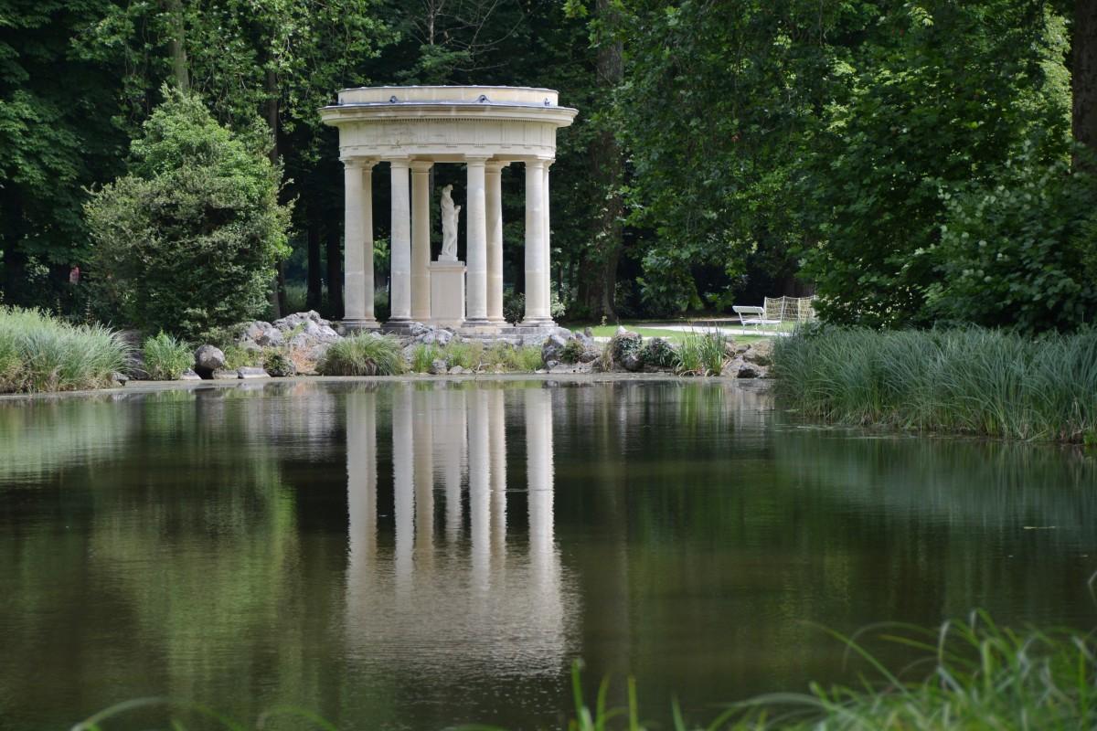 Fotos gratis rbol flor lago estanque reflexi n for Estanque reflectante