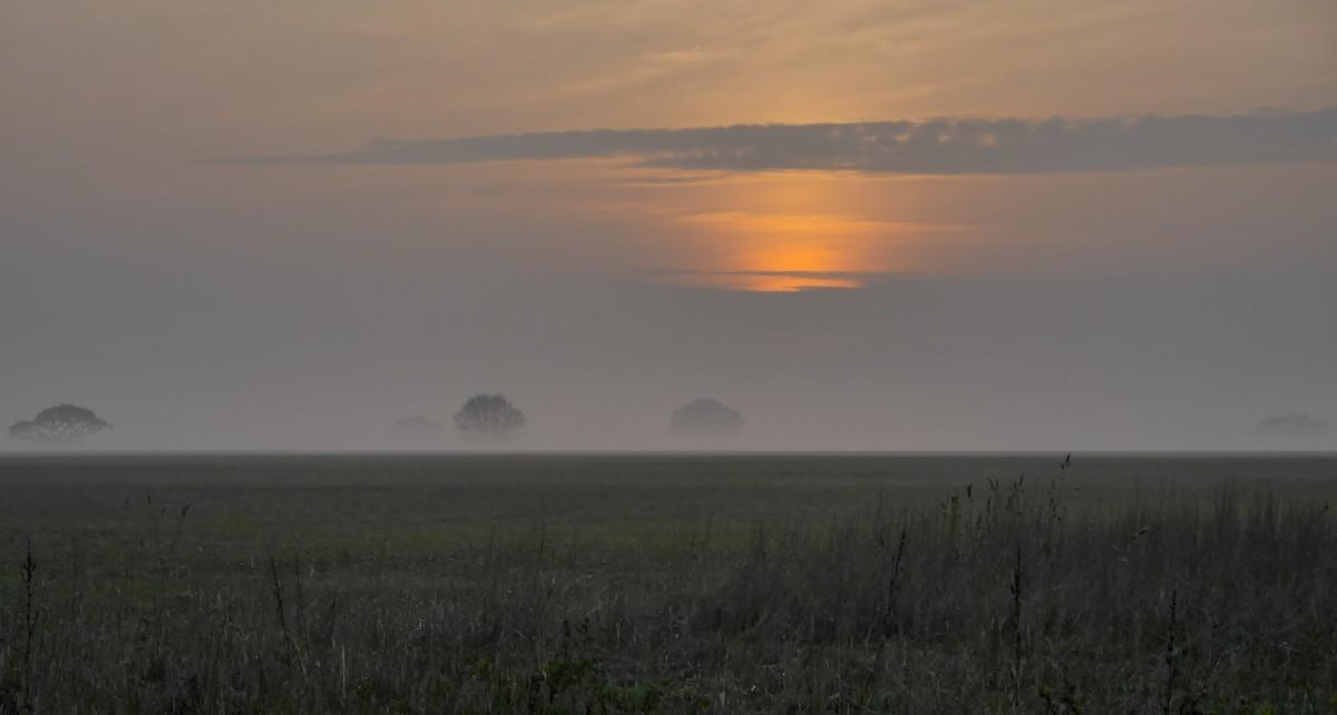 Images gratuites horizon le marais nuage brouillard lever du soleil le coucher du soleil - Meteo lever et coucher du soleil ...