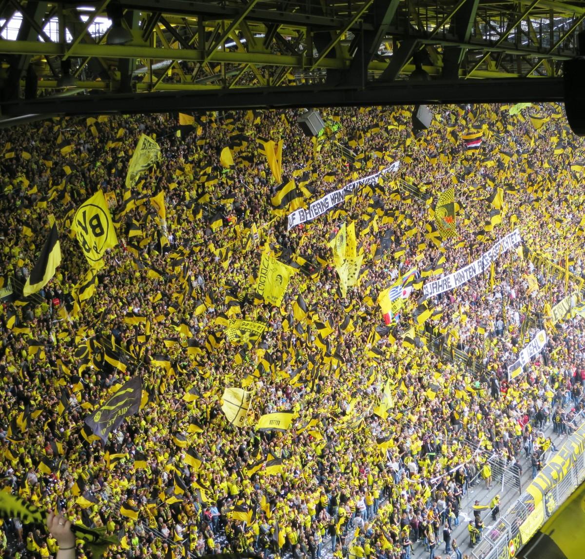 leaf flower botany football flora grandstand art dortmund fans football stadium yellow wall bvb viewers football fans borussia dortmund