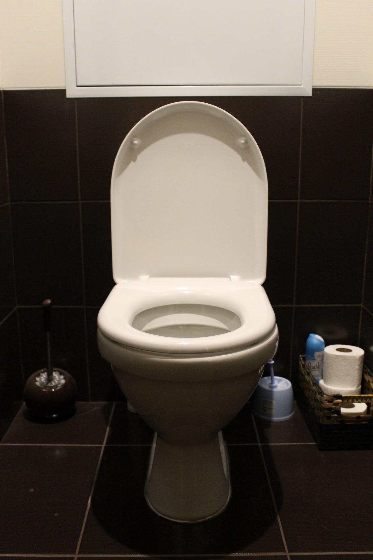 carrelage pour toilette