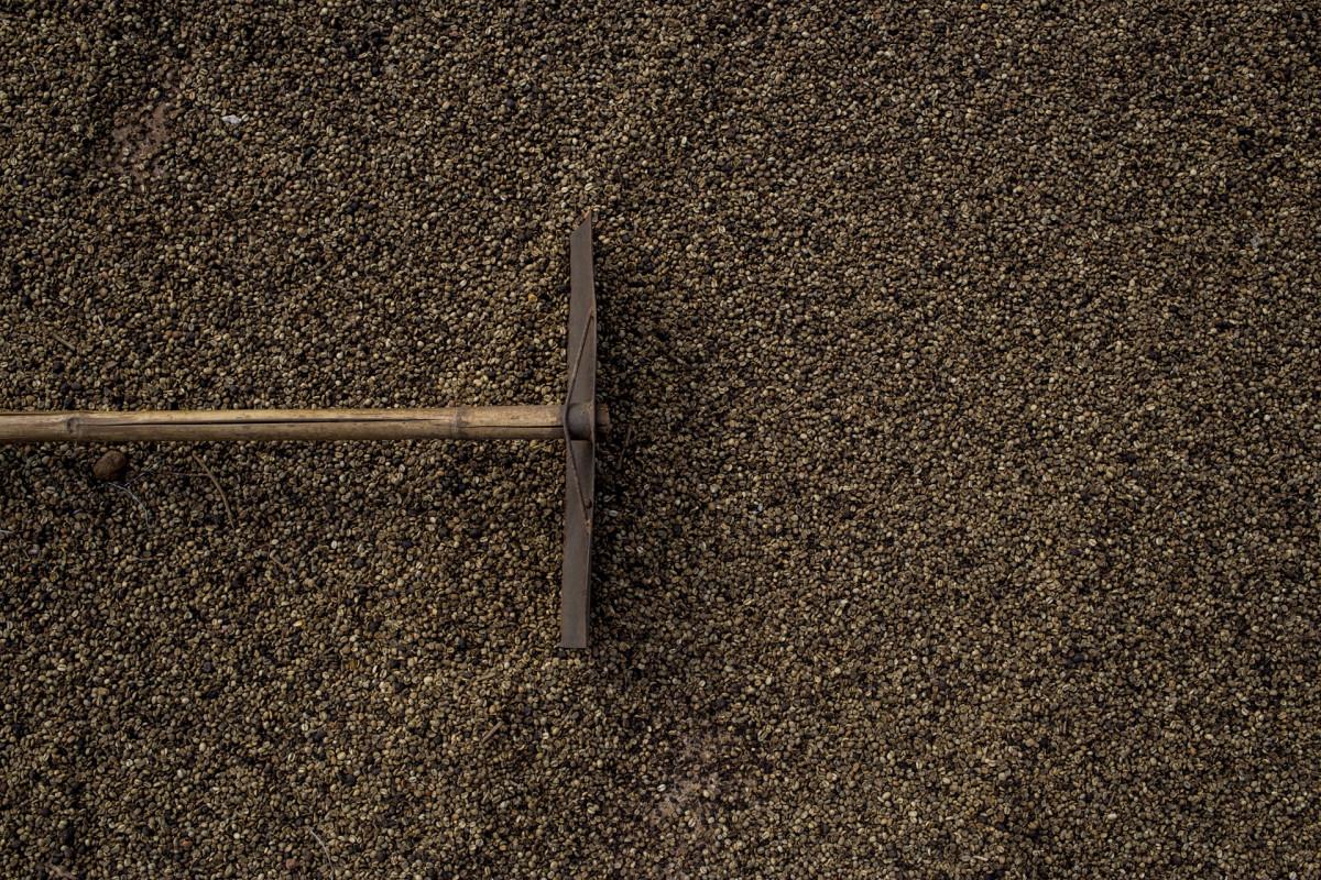 무료 이미지 : 모래, 목재, 조직, 아스팔트, 흙, 자료, 라미네이트 ...
