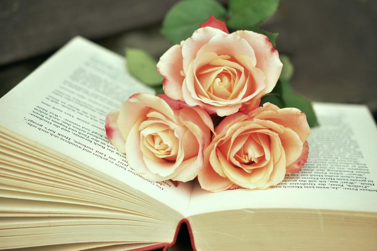 Цветы и книги